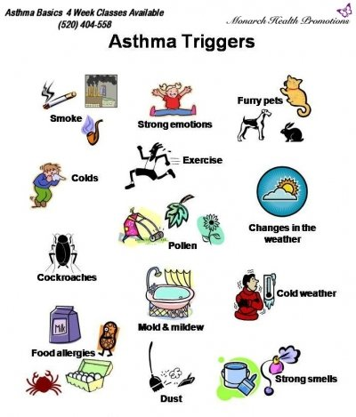 What triggers allergies symptoms